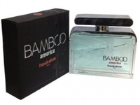 Bamboo America